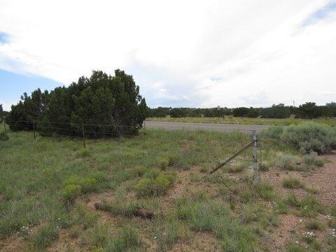 Rabbit Rd., Santa Fe, NM 87508 Photo 3