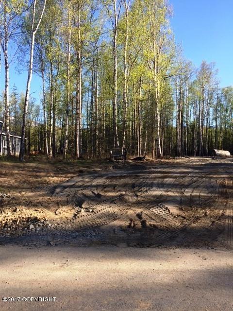 8170 E. Wolf Creek Rd., Wasilla, AK 99654 Photo 3
