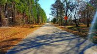 Home for sale: Tbd Chavis Rd., Conway, SC 29526