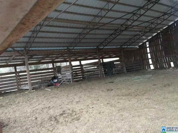 39080 Hwy. 231, Steele, AL 35987 Photo 83