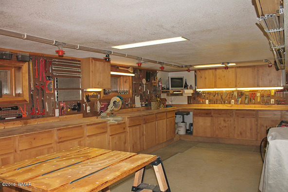 38721 State Route 373, Greer, AZ 85927 Photo 66