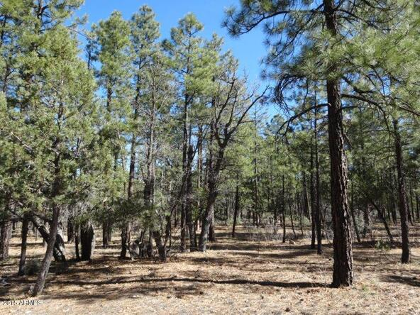 1090 W. Sadler Ln., Lakeside, AZ 85929 Photo 10