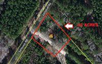 Home for sale: 336 Sampson Rd., Ridgeville, SC 29472