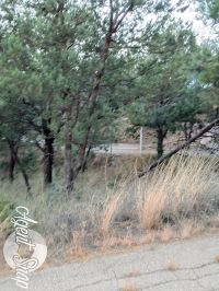 Home for sale: 106 Deodar Dr., Ruidoso, NM 88345