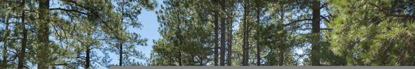 251-2563 Hart Merriam --, Flagstaff, AZ 86005 Photo 6