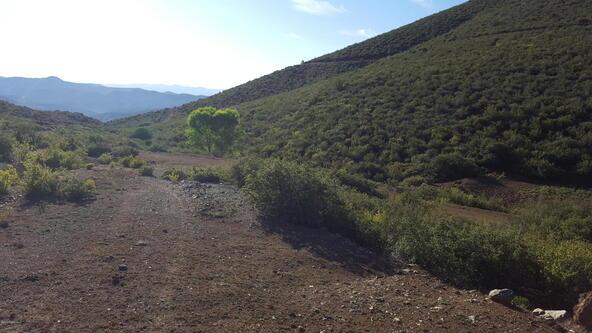 20 Freeport, Dewey, AZ 86327 Photo 114