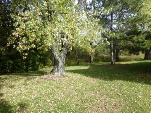 N9134 County Rd. B, Westfield, WI 53964 Photo 14