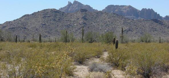 3xx N. 557th Avenue, Tonopah, AZ 85354 Photo 18