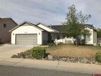 Home for sale: 581 Apricot Ln., Delta, CO 81416