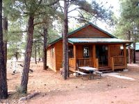 Home for sale: 2722 High Pines Loop, Overgaard, AZ 85933