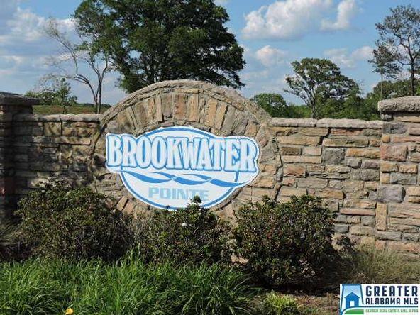 790 Brookwater Way, Wedowee, AL 36278 Photo 22