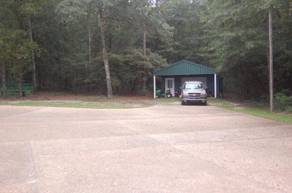 3108 County Rd. 157, Enterprise, AL 36330 Photo 6