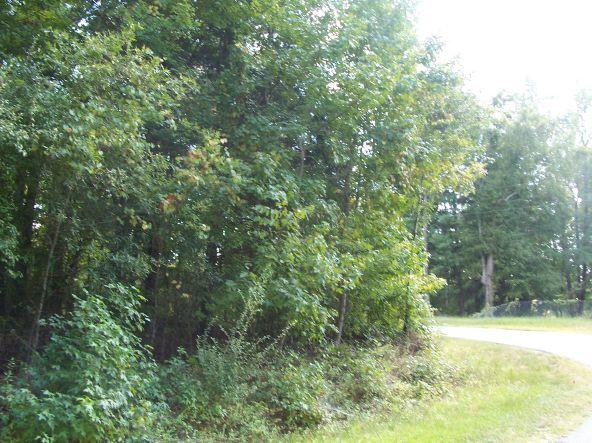 Rabon Creek Cir., Waterloo, SC 29384 Photo 20