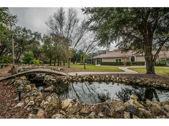 2270 N. Highland Avenue, Tarpon Springs, FL 34688 Photo 17