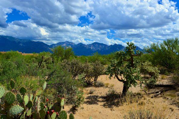 14601 N. Quiet Rain Dr., Oro Valley, AZ 85755 Photo 6