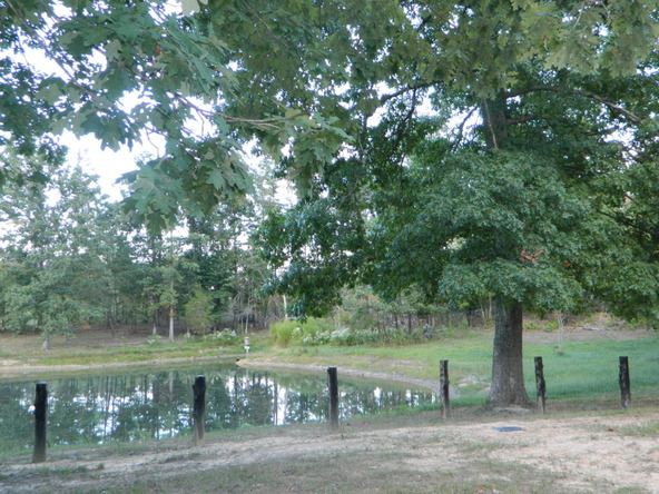 526 County Rd. 139, Bryant, AL 35958 Photo 155