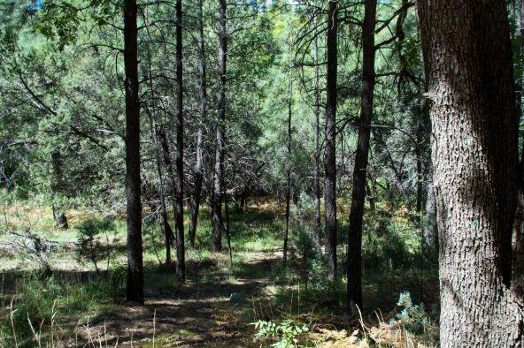 535 N. Rim Trail Rd., Payson, AZ 85541 Photo 3