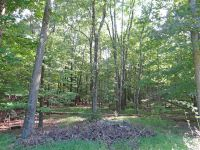 Home for sale: Ohland Rd. Rear, Stanfordville, NY 12581