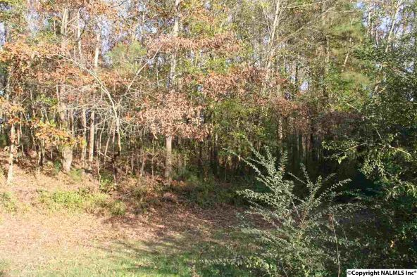 6.35 Acres Hwy. 72, Athens, AL 35611 Photo 14