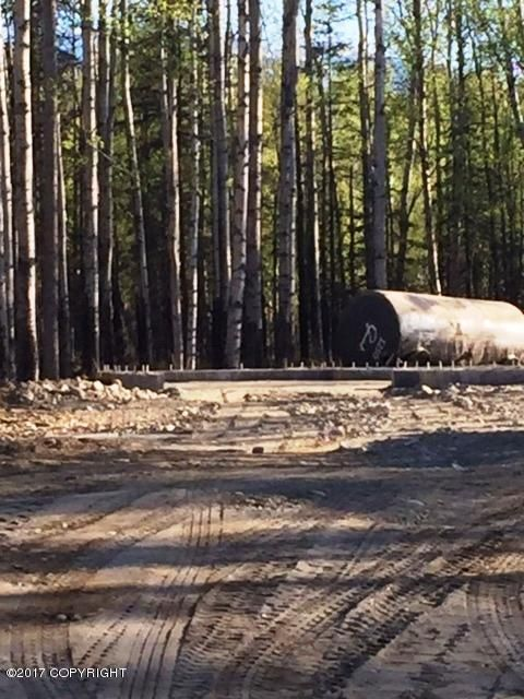8170 E. Wolf Creek Rd., Wasilla, AK 99654 Photo 4