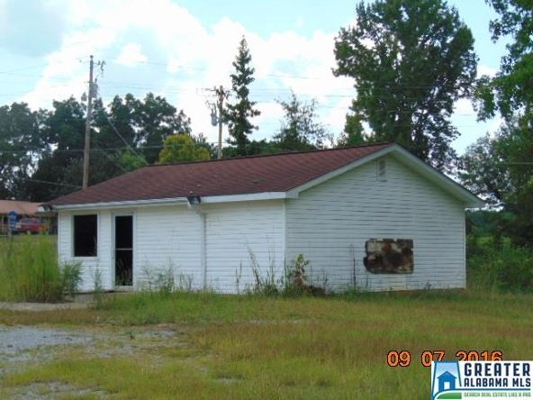3701 Co Rd. 32, Clanton, AL 35045 Photo 4