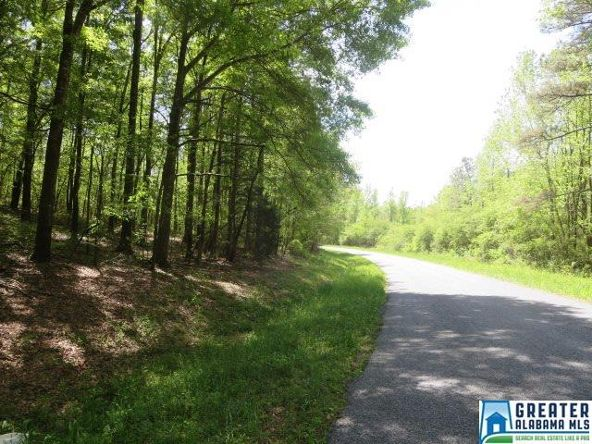 32 Acres Lystra Rd., Ashland, AL 36251 Photo 8