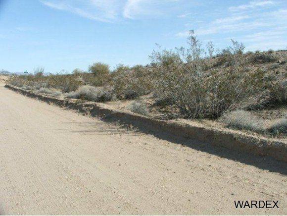 16775 S. Douglas Ln., Yucca, AZ 86438 Photo 12