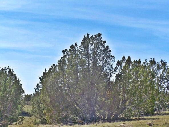 9262 W. Bandera Pass, Williams, AZ 86046 Photo 7