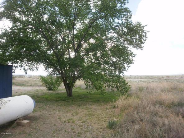 1588 N. Steele, Cochise, AZ 85606 Photo 38
