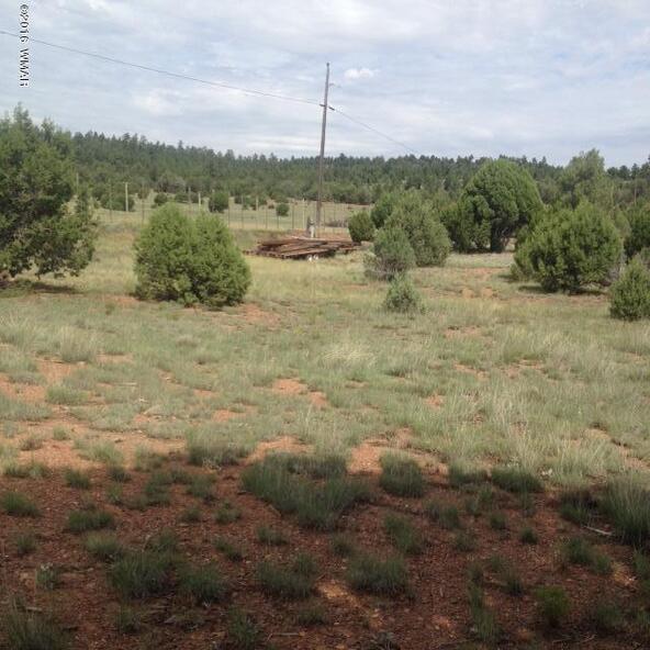4036 Jasmine Ln., Overgaard, AZ 85933 Photo 6