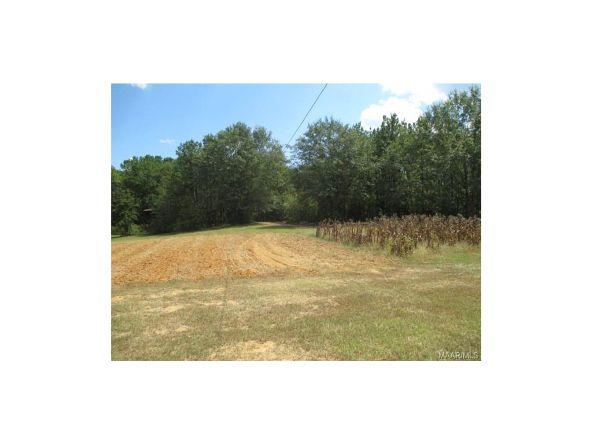 2134 County Rd. 66 ., Deatsville, AL 36022 Photo 35