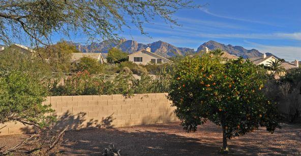 11360 N. Palmetto Dunes, Tucson, AZ 85737 Photo 8