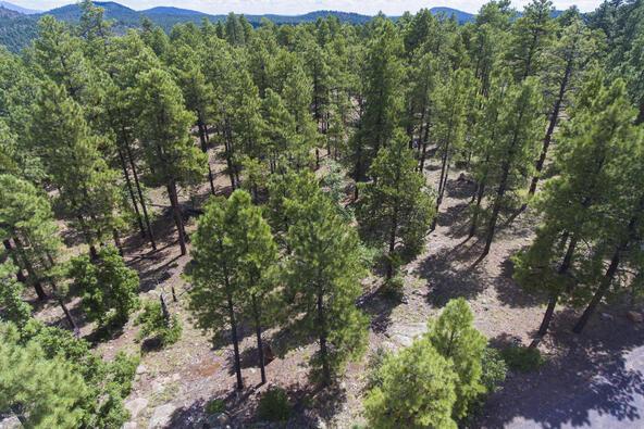 1729 S. Pine Ridge Dr., Williams, AZ 86046 Photo 12