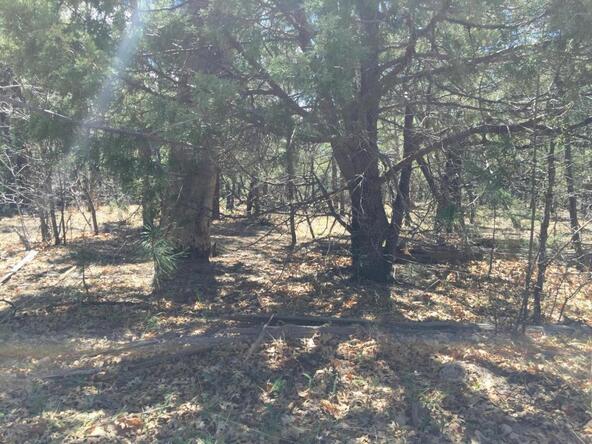 790 W. Pine Spruce Ln., Pinetop, AZ 85935 Photo 10