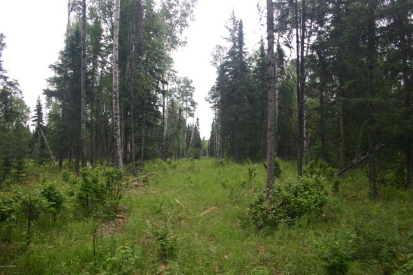 5041 N. Infinite Rd., Wasilla, AK 99654 Photo 8