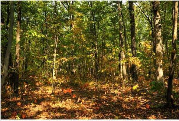0 Laurel Lake Dr., Monteagle, TN 37356 Photo 2