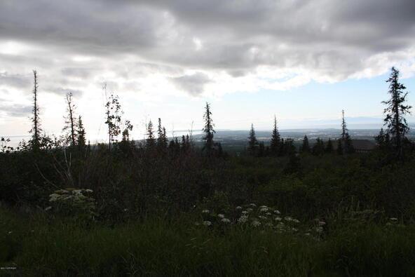 1231 Sultana Ct., Anchorage, AK 99516 Photo 34