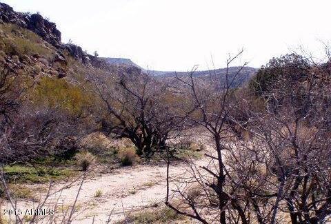 80ac. E. Knight Creek Rd., Hackberry, AZ 86411 Photo 7
