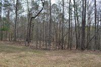 Home for sale: Lot 40 Fern Ridge Ct., Dadeville, AL 36853