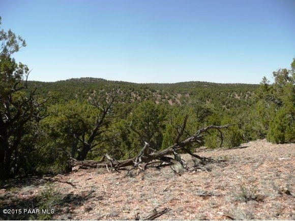 1024 Sierra Verde Ranch, Seligman, AZ 86337 Photo 11