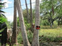 Home for sale: 978 S. Kika de la Garza, La Joya, TX 78560