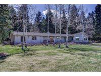 Home for sale: 32576 Buffalo Park Rd., Evergreen, CO 80439