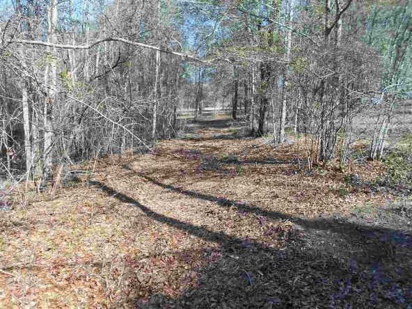 16.9 Acres Private Rd. 1363, Ariton, AL 36311 Photo 29