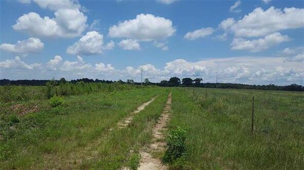 Tbd County Rd. 40, Coffee Springs, AL 36318 Photo 32