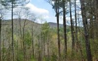 Home for sale: Lot 1 Indian Ridge, Blue Ridge, GA 30511
