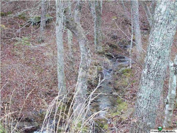 22604 N. County Rd. 89, Mentone, AL 35984 Photo 10