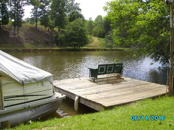 2426 County Rd. 432, Woodland, AL 36280 Photo 5