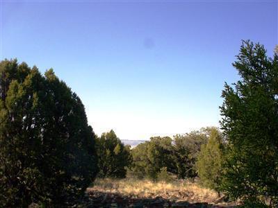 54867 N. Presidio Parkway, Seligman, AZ 86337 Photo 8