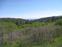 Home for sale: 708 Warren Peak Rd., Auburndale, WI 54412