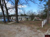 Home for sale: 14 Black Forrest Ln., Gamaliel, AR 72537